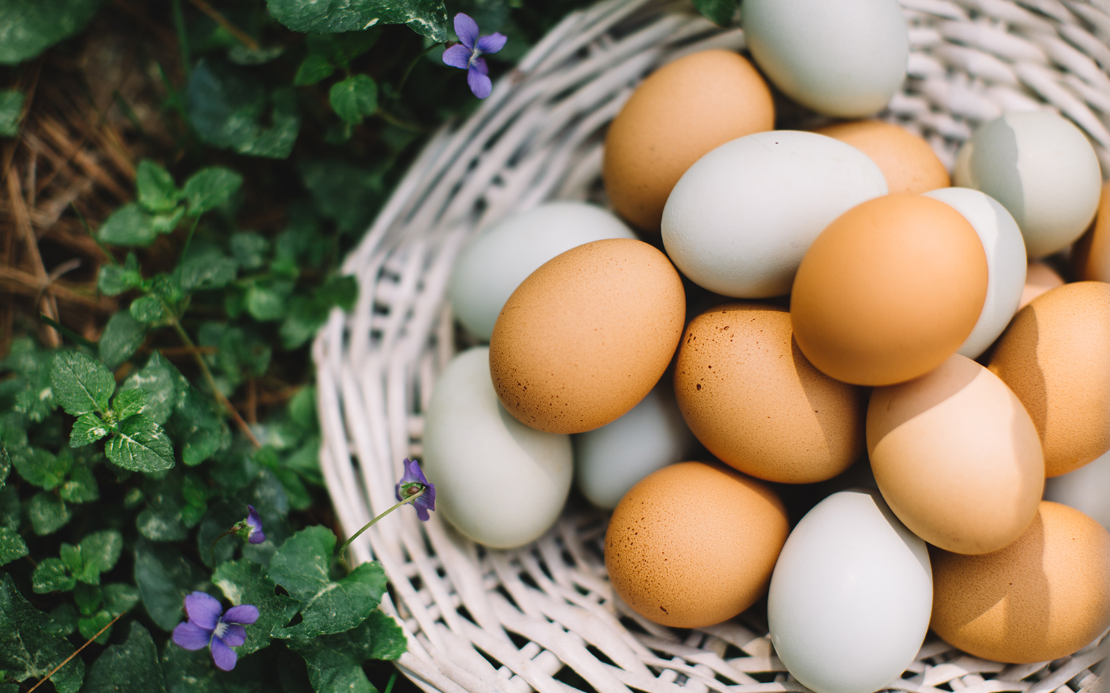 How secure is cloud storage? Don't put all the eggs in one basket!